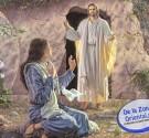 REDACCIÓN DELAZONAORIENTAL.NET Hoy es el día que laIglesia Católica celebra el sentido de la Fe, porque festeja el Domingo de la Resurrección de Jesús o de Pascua, cuando Cristo triunfante […]