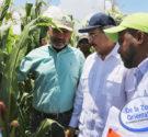 REDACCIÓN DELAZONAORIENTAL.NET HONDO VALLE.- El presidente Danilo Medina revisitó este municipio de la provincia Elías Piña, para lanzar un proyecto que permitirá devolverle sus riquezas forestales a lasmontañas. Asimismo, crear […]