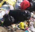 REDACCIÓN DELAZONAORIENTAL.NET El Concejo de Regidores de Los Alcarrizos declaró en estado de extrema emergencia ese municipio por el gran cúmulo de basura en esa demarcación, debido a la prohibición […]