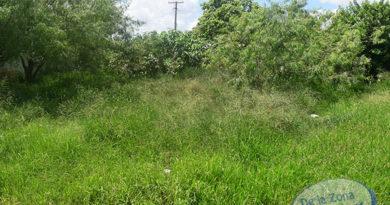 Apresan padres acusados de asesinar niño y enterrarlo en un solar en Boca Chica
